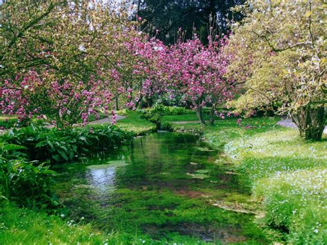 giardini di ninfa immagini the garden of ninfa nature and wildlife travel ideas