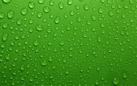 wallpaper green love smooth green wallpapers for pc or android healthy business