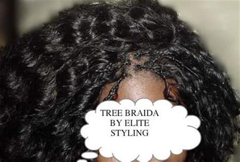 tree braids vs micro braids micro tree invisible braids