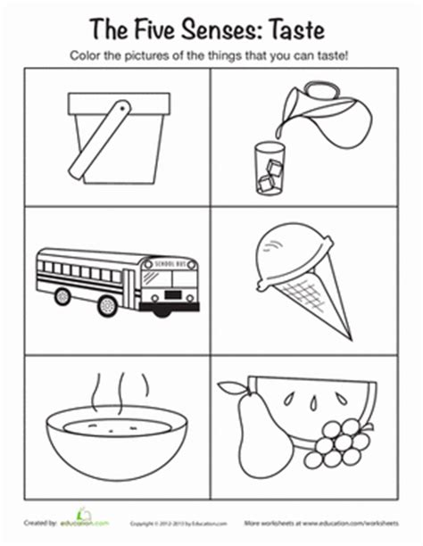 coloring pages five senses preschool things you can taste worksheet education com