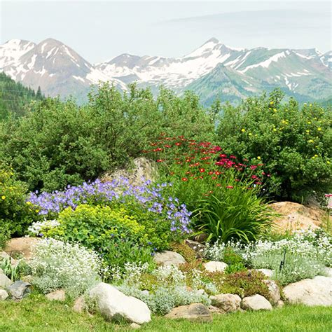 Rock Garden Design Ideas Rock Garden Plan