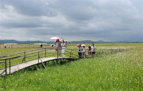 fresco clima turistas disfrutan clima fresco en prado de bashang