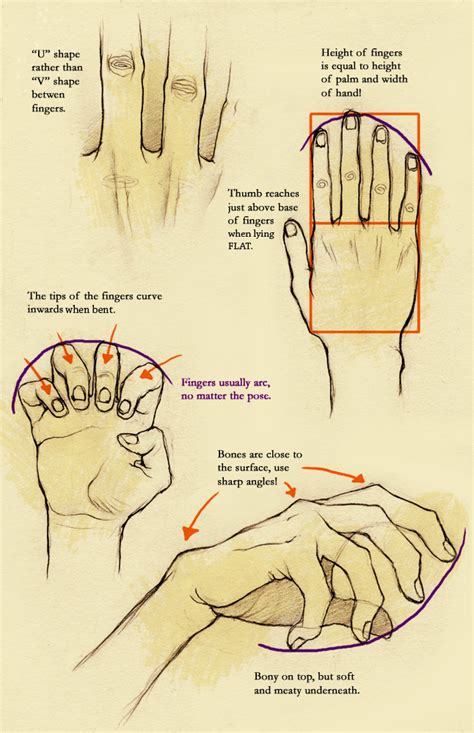 how to draw hands 35 tutorials how tos step by steps gripping tutorials on how to draw hands maca is rambling