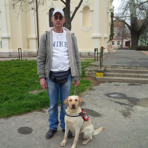 Activities For Blind Dogs The Bar 225 Thegyi Guide Dog Scool Is Hungarian Guide Dog