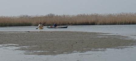 tavole maree trieste la le maree e la pesca angler skt