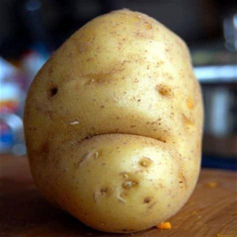 like a potato food that looks like dp large