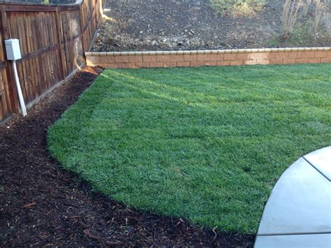 landscaping a cut above based in menifee calif a