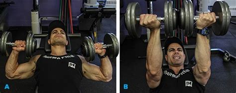 twisting dumbbell bench press build your best chest 5 must do pec exercises