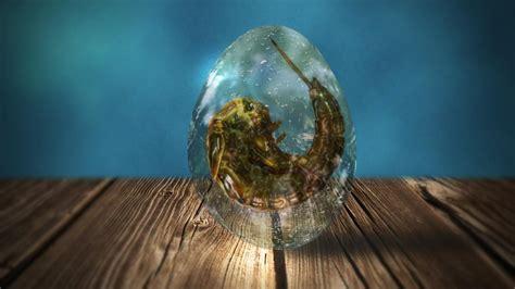 wood shadows bubbles fantasy art alien mystical wallpaper