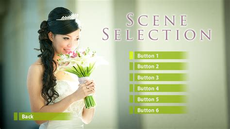 Adobe Encore Menu Design Template L A Color Pros Blog Adobe Premiere Templates Wedding