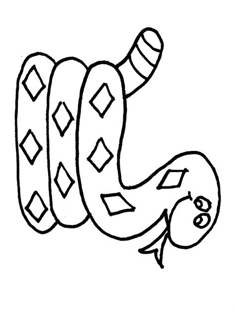 snake template snake activities