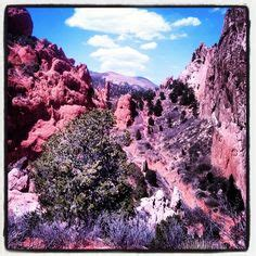 Garden Of The Gods Dispensary by A Leap Of Faith On Leap Of Faith Zen Quotes