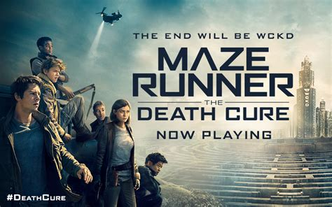 sinopsis film maze runner death cure maze runner the death cure 2018 filmbarat net