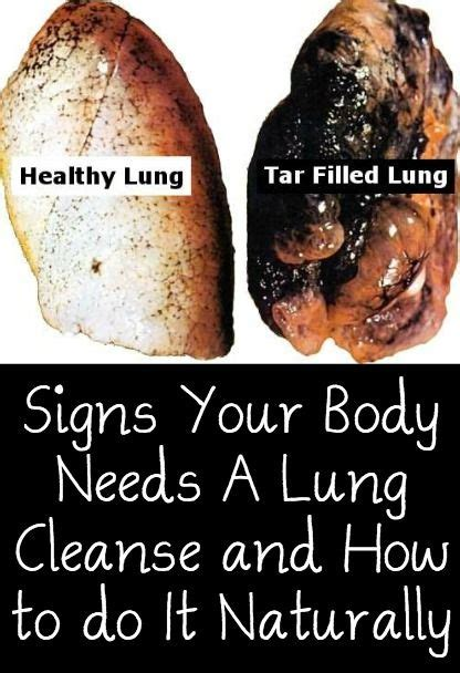 Best Lung Detox by The 25 Best Lung Cleanse Ideas On Lung Detox