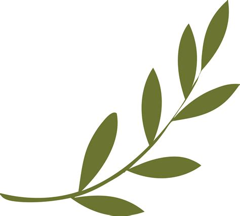 olive art olive leaves clip art www imgkid com the image kid has it
