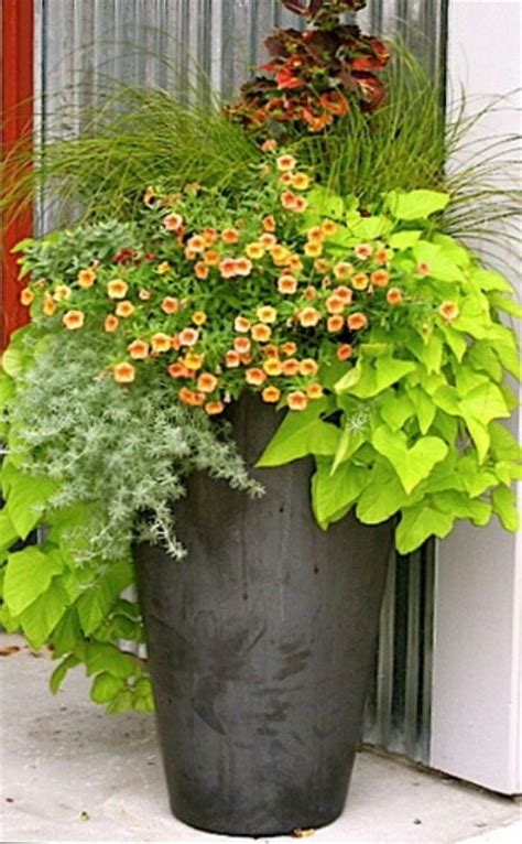 porch container garden front porch arrangements container gardening