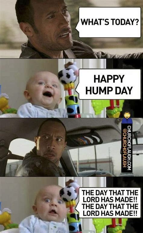 happy hump day funny quotes quotesgram