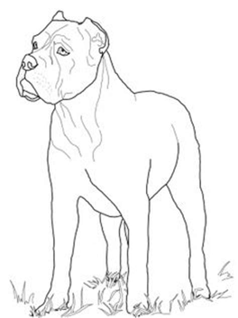 guard dog coloring page image result for how to draw a pitbull face animal