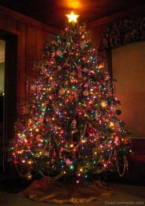 christmas tree light day pictures images graphics for