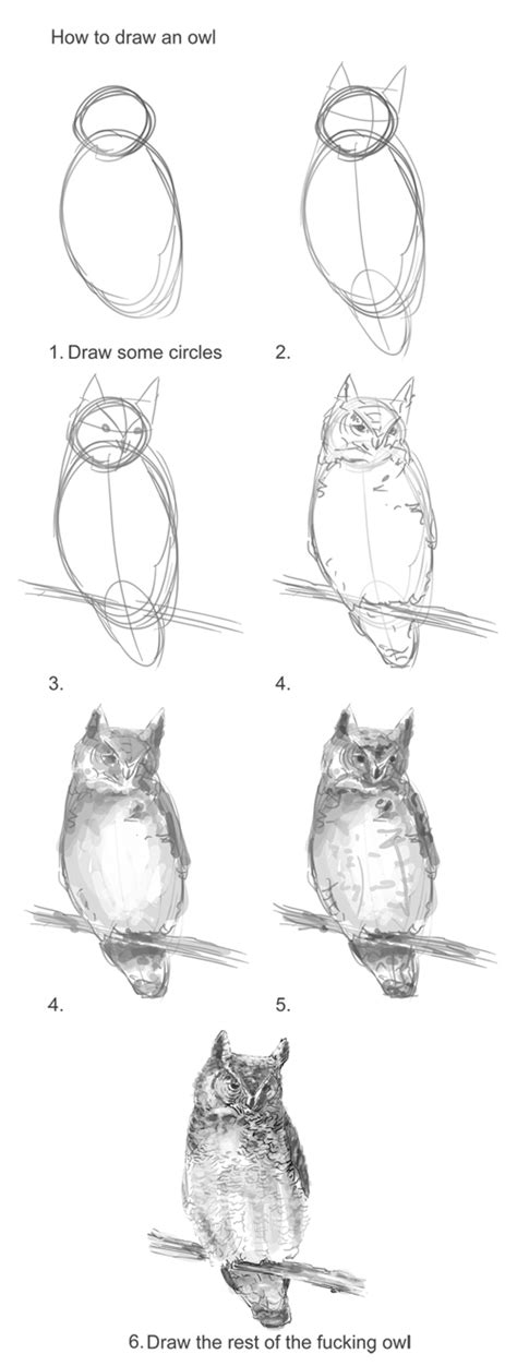 how to draw an owl learn to draw a cute colorful owl in how to draw an owl the missing steps teaching art