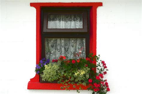 win with flower file cottage window with curtains and flowers geograph