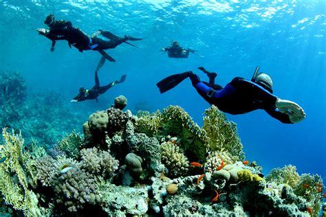 bagno zanzibar sottomarina paestum sa i resti di un relitto bellico trovati