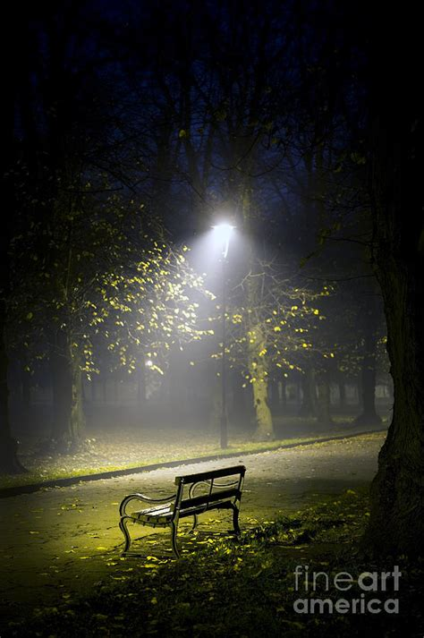 night bench park bench at night photograph by lee avison