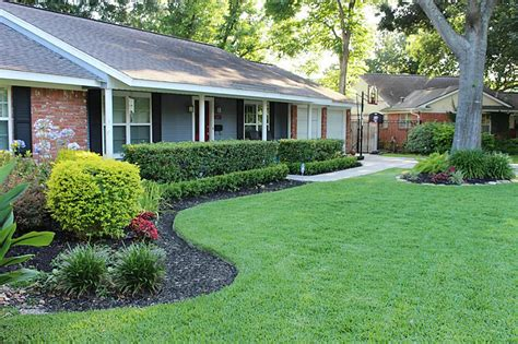 late summer lawn care late summer landscaping tips for a healthy garden lawn