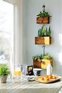 Plants In Kitchen I Love This Indoor Plant Ideas The Polished Project
