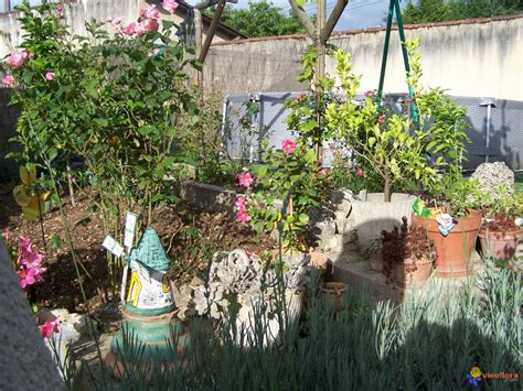 decors de jardin photo decoration au jardin