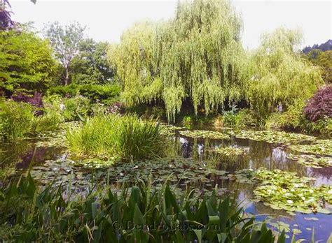 giardino di giverny giardino acquatico di monet dendrolabs