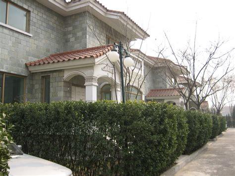 garden villa in beijing beijing villa 北京京润水上花园别墅 北京别墅