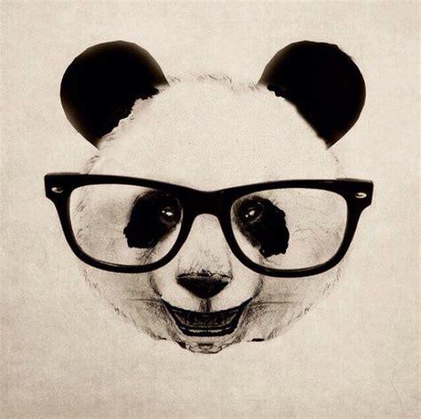mas de 1000 imagenes sobre pandas en pinterest flor chicas y osos m 225 s de 1000 ideas sobre dibujos de osos panda en pinterest