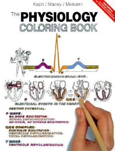 saunders veterinary anatomy coloring book review the physiology coloring book by kapit reviews
