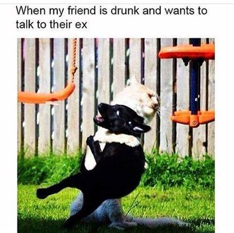 Drunk Friend Memes - managing drunk friends