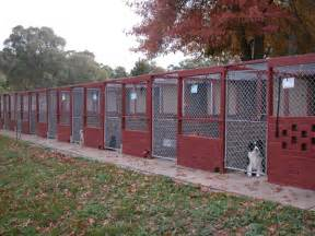 What Are Backyard Breeders The Kennels Alpha Boarding Kennels