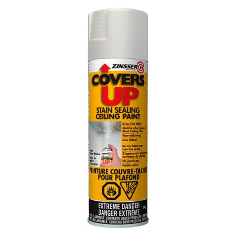 Ceiling White Spray Paint by Quot Covers Up Quot Stain Sealing Ceiling Paint Spray White Rona