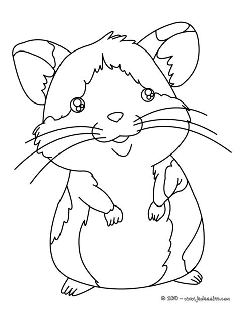 free do hamster coloring pages