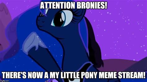 Mlp Meme Generator - meme stream imgflip