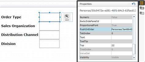 tutorial sap personas pushonenter event on sap personas like onkeypress in