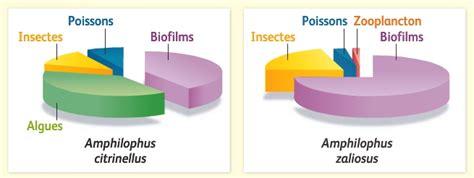regime alimentare in index of site wp content uploads 2013 11