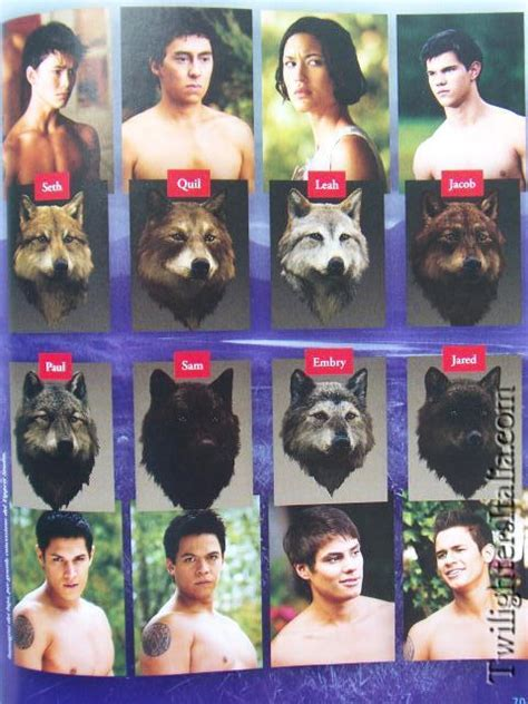 20 Guys Of The Twilight Series by Eclipse Companion Book 20 New Pics Twilight Series