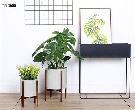 buy a planter indoor planters concrete planter pot with modern plant