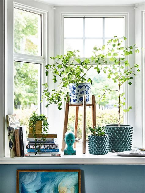 House Plants For Window Sills 25 Best Ideas About Window Sill Decor On