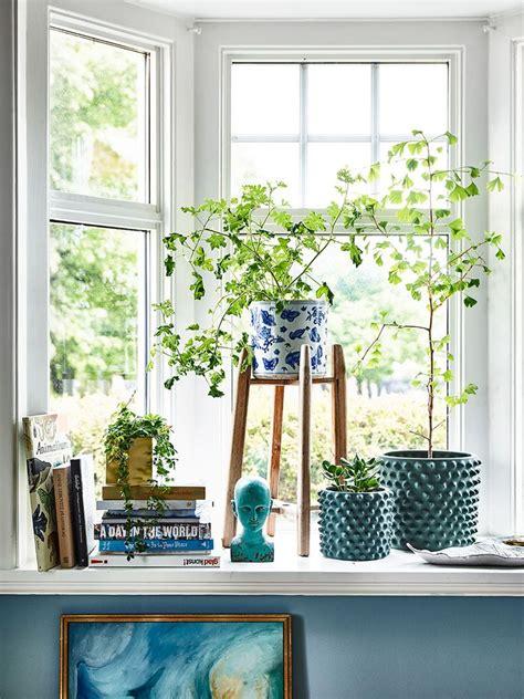 Bedroom Window Plants 25 Best Ideas About Window Sill Decor On