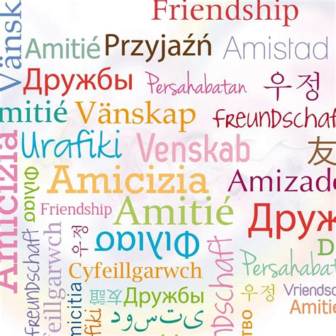 testi sull amicizia amicizia poesie filastrocche e recita per la scuola primaria