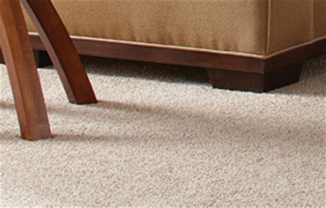 Williams Floor Covering by Inspiration Sherwinwilliams