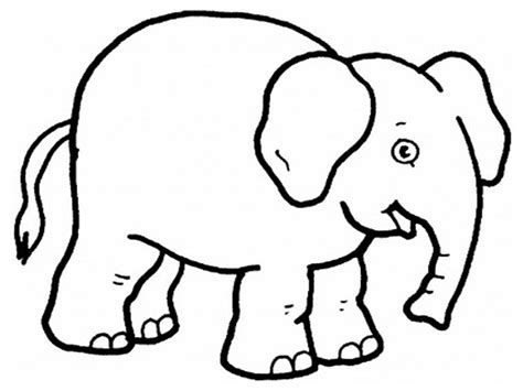 preschool baby animals coloring pages animal color pages preschool coloring pages ideas