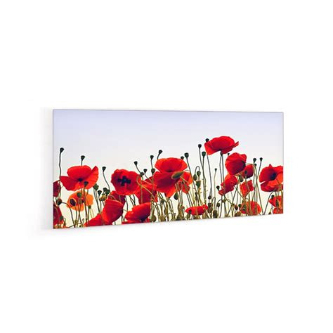 credence champs de coquelicots verre  alu credence