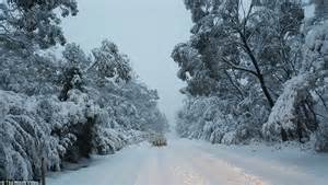 australia wakes to snow in new south wales queensland and